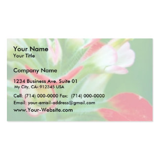 Scarlet Paintbrush Business Cards