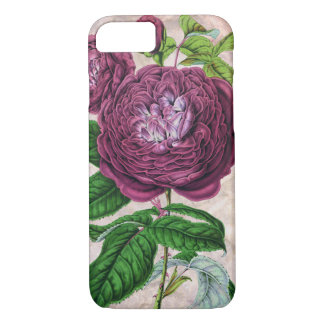 Scarlet Rose Art iPhone 7 Case
