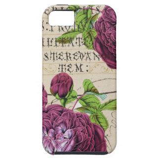 Scarlet Rose Manuscript Collage iPhone 5 Cover