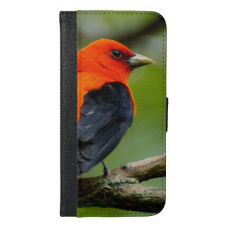 Scarlet Tanager iPhone 6/6s Plus Wallet Case