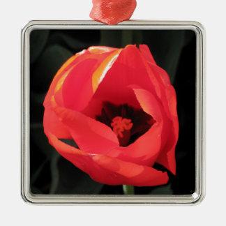 Scarlet Tulip Silver-Colored Square Decoration