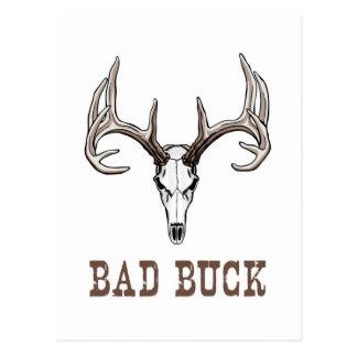 Scary buck (elk or deer) skull with antlers/horns postcard