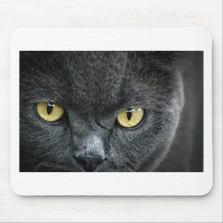 Scary Cat Eyes Mouse Pad