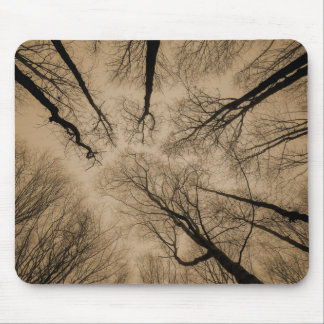 Scary Forest Mouse Pad