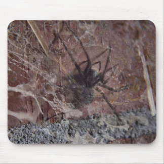 Scary Halloween Spider Mouse Pad