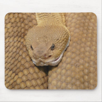 Scary Rattlesnake Photo Mouse Pad