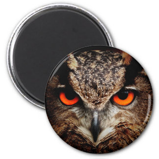Scary Red Eyes Eagle Owl Refrigerator Magnet