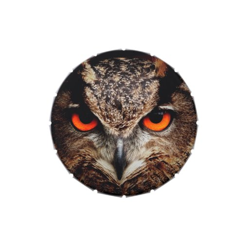 Scary Red Eyes Eagle Owl Jelly Belly Candy Tins