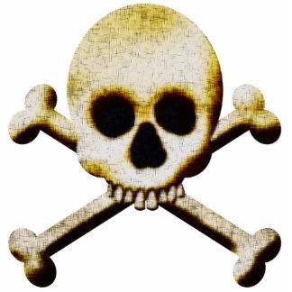 Scary Skull Crossbones Halloween Accessories Photo Sculpture Badge
