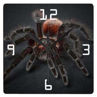 Scary Tarantula Spider Arachnophobia Square Wall Clock