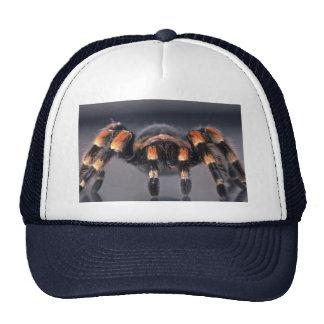 Scary Tarantula spider Cap