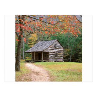 Scene Historic Log Cabin In Smoky Postcard