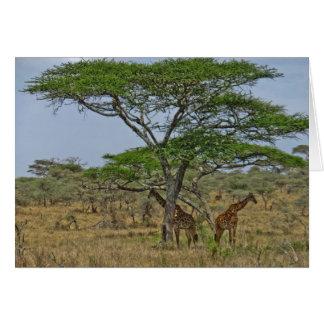 Scenes from Tanzania Greeting Card