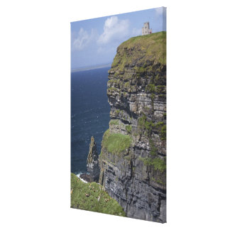 Scenic Cliffs of Moher and O'Brien's Tower Stretched Canvas Print