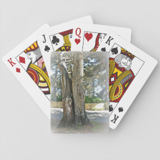 Scenic image of two trees grown together poker deck
