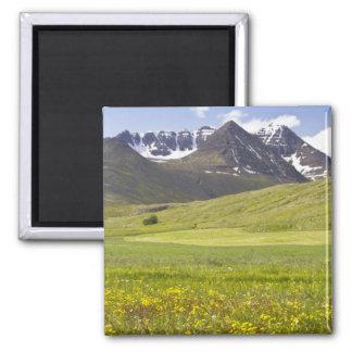 Scenic landscape of Svarfadardalur valley Magnet