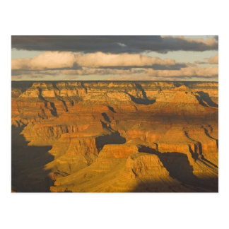 Scenic landscape of the south rim of the Grand Postcard