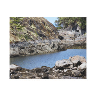 Scenic Trail Stretched Canvas Prints