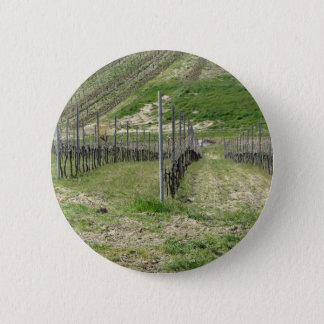 Scenic view of rolling hillside with vineyards 6 cm round badge