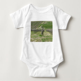 Scenic view of rolling hillside with vineyards baby bodysuit