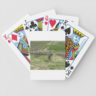 Scenic view of rolling hillside with vineyards bicycle playing cards