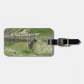 Scenic view of rolling hillside with vineyards luggage tag