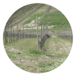 Scenic view of rolling hillside with vineyards plate