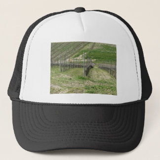 Scenic view of rolling hillside with vineyards trucker hat