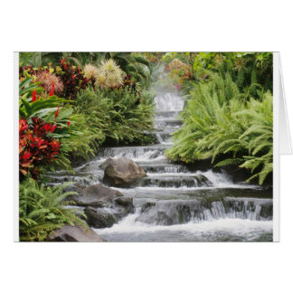 Scenic waterfall Greeting Card