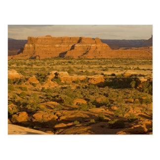 Scenic winter desert landscape on the way into 2 postcard
