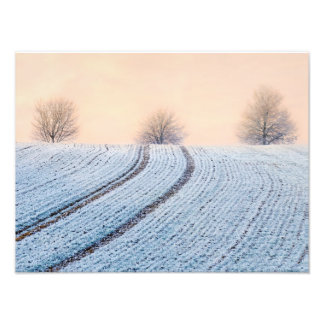 Scenic Winter Landscape Trees Hoarfrost Paperprint Art Photo