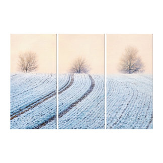Scenic Winter Landscape Trees with Hoarfrost Photo Canvas Print