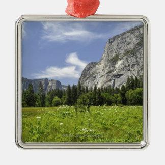 Scenic Yosemite Valley, California Metal Ornament