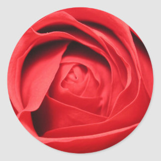 Scent of a Rose Classic Round Sticker
