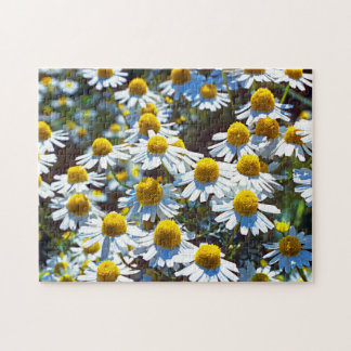 Scented Mayweed Jigsaw Puzzle