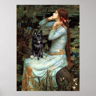 Schipperke 4 - Ophelia Seated Poster