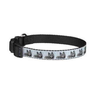 Schipperke Pet Collar