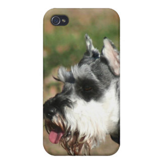 Schnauzer dog covers for iPhone 4