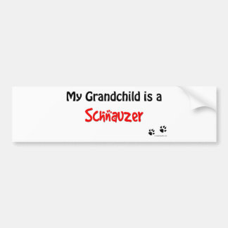 Schnauzer Grandchild Bumper Sticker