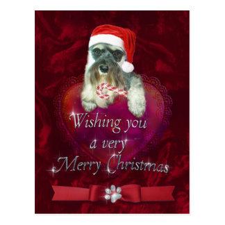 Schnauzer Merry Christmas Postcard