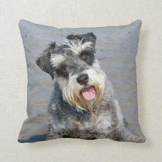 Schnauzer miniature dog cute photo, cushion