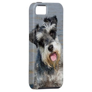 Schnauzer miniature dog cute photo portrait, gift iPhone 5 covers