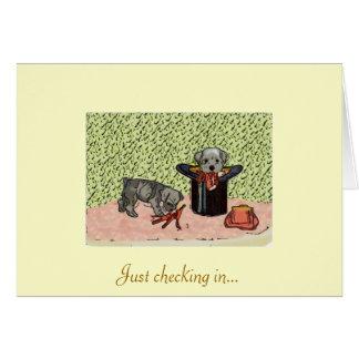 Schnauzer Puppy Card Vintage
