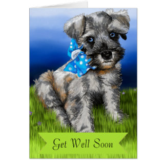 Schnauzer Puppy with Get Well Soon Card