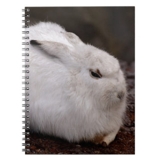 Schneehase Cute Zoo Animal Animal World Fur Hare Notebooks