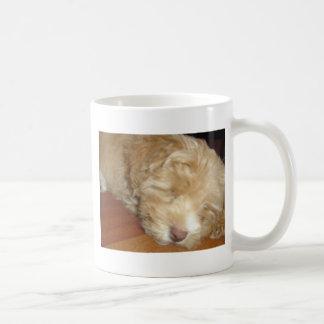 Schnoodle Puppy Sleeping coffee mug