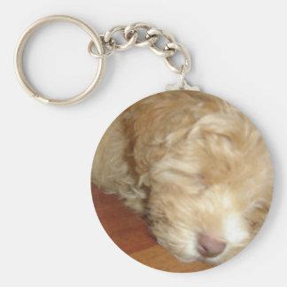 Schnoodle Puppy Sleeping keychain