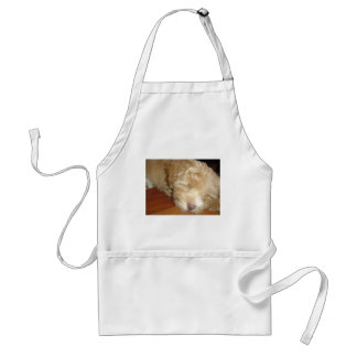 Schnoodle Puppy Sleeping Standard Apron
