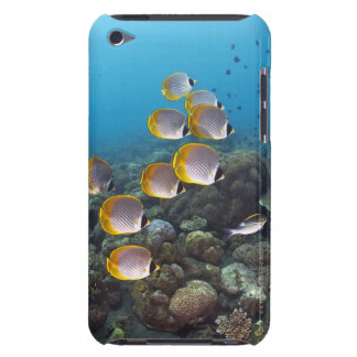 School of angelfish iPod touch Case-Mate case
