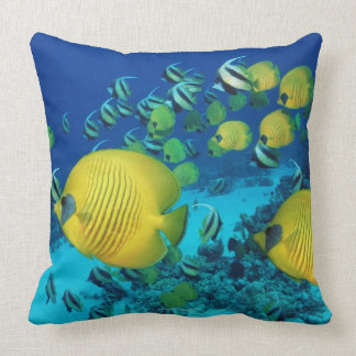 School of Butterfly Fish Swimming on the Seabed Pillows
